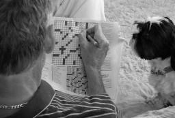 بازی با کلمات: نگاهی به انواع تست نرم افزار